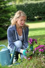 Flowers In Garden Cheerful Blond Woman Planting Flowers In Garden Stock Photo