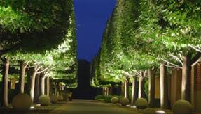 Landscape Up Lights Landscape Lighting Maintenance Outdoor Lighting Ohio