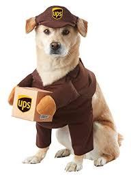 Amazon Halloween Costumes Amazon California Costumes Ups Pal Pet Halloween Costume