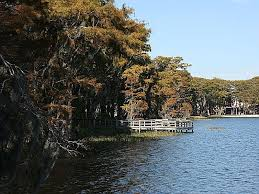 Alabama National Parks images Florala state park an alabama state park located near andalusia jpg