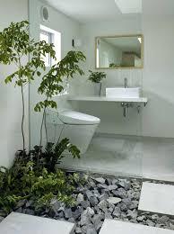 Best Plants For Bathroom Plants For Inside Office U2013 Adammayfield Co