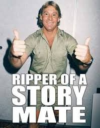 Cool Story Bro Meme - cool story bro steve irwin check out more funny pics at