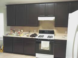kitchen new dark stained kitchen cabinets design decor wonderful