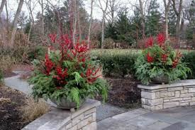 Winter Container Garden Ideas 15 Winter Pot Ideas Gardening Creating A Winter Container
