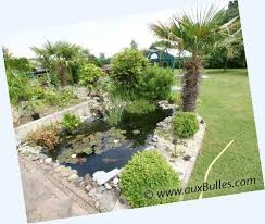 Backyard Bassin - 14 best jardin et bassin images on pinterest garden ideas