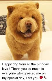 Much Dog Meme - happy dog from all the birthday love thank you so much to everyone