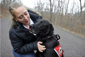 Comfort Pet Certification Admin Author At Service Dog And Emotional Support Animal