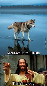 Russia Meme - russia memes best collection of funny russia pictures
