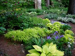 Garden Of Ideas A Woodland Garden Of Flowering Shrubs The Tree Center