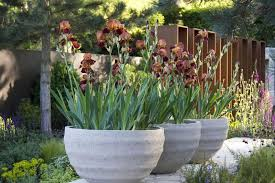 10 ideas for large garden containers hgtv