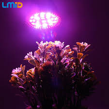 red and blue led grow lights lmid 5w led grow light full spectrum ac220v e27 red blue led plant