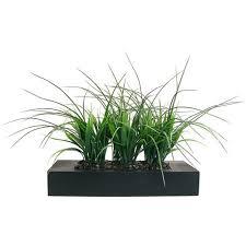 laura ashley home artificial plants you u0027ll love wayfair