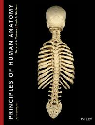 Human Anatomy And Physiology Textbook Online Wiley Principles Of Human Anatomy 13th Edition Gerard J
