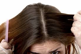 Hair Loss Vitamin Deficiency Signs Of Minerals And Vitamin Deficiency Unica Sport