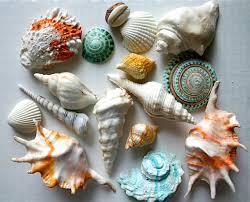 Edible Candy Jewelry 257 Best Beach Wedding Edible Sea Shells Jewelry Barefoot