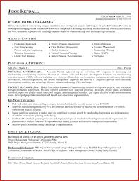 executive resume pdf luxury executive resume resume pdf