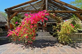 solitaire namib sossusvlei lodges namibia
