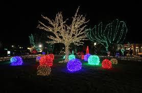 Phoenix Zoo Lights by Stl Zoo U0027s U0027wild Lights U0027 Nominated For Best Zoo Lights In Usa