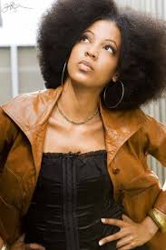 stepbystepnaturalhairstyling com 3369 best natural hair styles images on pinterest natural hair