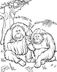 zoo scene coloring free download