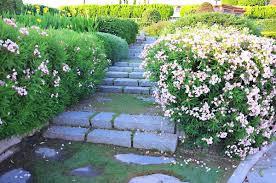 sloped backyard drainage good drainage for your backyard