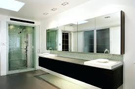 Bathroom Medicine Cabinet Mirrors Large Medicine Cabinet Mirror Bathroom Chaseblackwell Co
