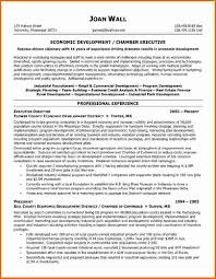 Resume Samples Hr Executive by Sample Resume Of Executive Director How To Write A Graduate Essay