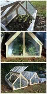 Greenhouse Starter Kits Best 25 Indoor Greenhouse Ideas Only On Pinterest Indoor Herbs