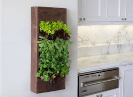 Vertical Wall Garden Ideas 30 Breathtaking Living Wall Designs For Creating Your Own Vertical