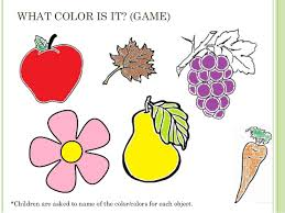 what color is ppt colors