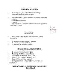 How To Format Education On Resume 09 Acute Inflamation