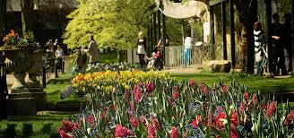 Botanical Gardens Ticket Prices Ticket Prices And Admission Visit Bristol Zoo Today