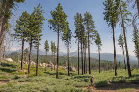 California Destination Travel images Xclusive weeks feature lake tahoe california rtx traveler online jpg