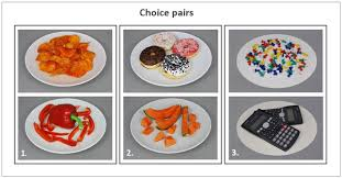 cuisine am ag schmidt functional mri of challenging food choices forced choice between