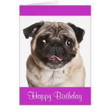 pug puppy greeting cards zazzle