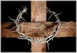 the crown of thorns daily