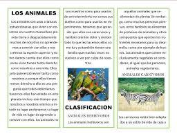 imagenes de animales carnivoros para imprimir triptico los maravillosos animales