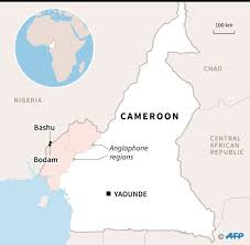Fenn Treasure Map Nigeria Pledges Support To Cameroon Over Secession Threat