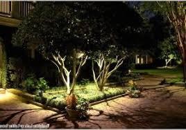Moonlighting Landscape Lighting Landscape Lighting Systems Really Encourage Oak Tree Lighting