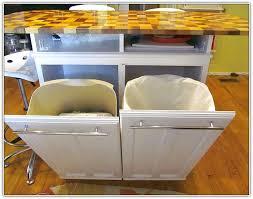 Trash Can Storage Cabinet Kitchen Trash Can Storage Cabinet Home Design Ideas