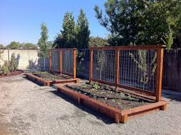 best 25 fence for garden ideas on pinterest vegetable garden