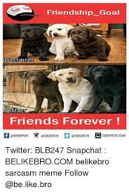 Friends Forever Meme - friends forever meme 28 images 25 best memes about friends