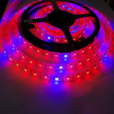 Blue Led Lights Strips by Led Grow Strip Layout