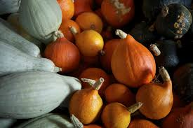 thanksgiving recipes 5 reasons to be grateful for squash gardenista