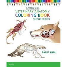 the anatomy coloring book kaplan kapit anatomy coloring book at coloring book