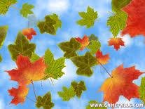 fall leaves screensaver windows screensavers planet