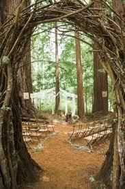 redwood forest wedding venue 12 redwood wedding venues in the bay area wedding venues