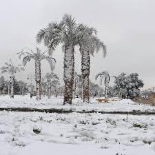 in saudi arabia desert