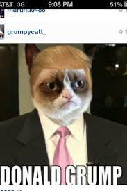 Grumpy Kitty Meme - the grumpiest grumpy cat memes to sadden your day snappy pixels