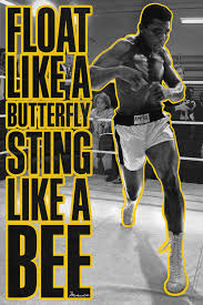 float like a butterfly sting like a bee canvas wall icanvas